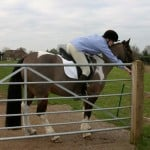Opening a gate from your pony