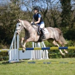 Rider and pony jumping