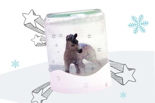 How to make a pony snow globe
