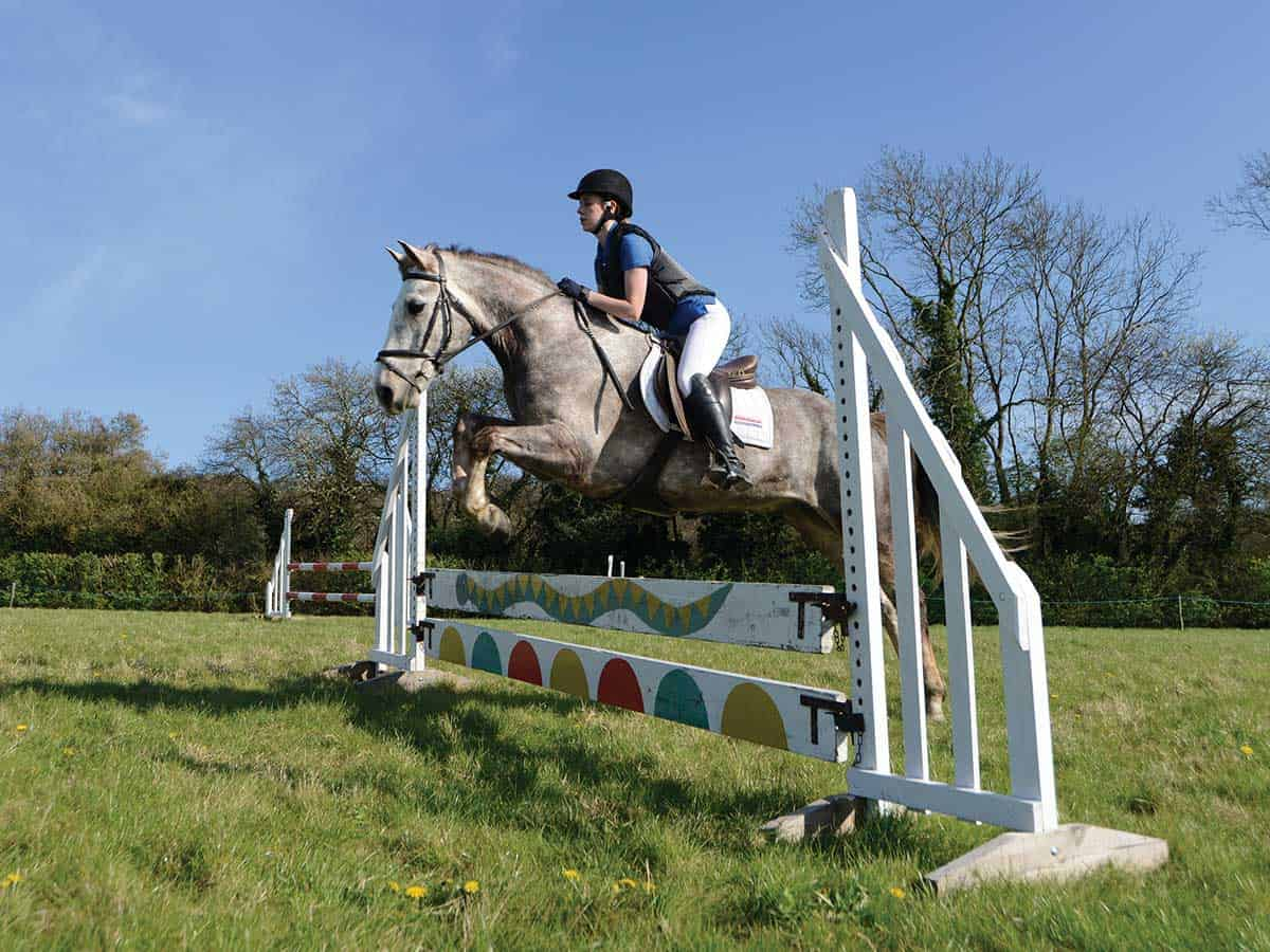 Showjumping an upright fence with planks