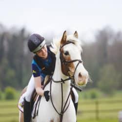 Think-like-a-pony