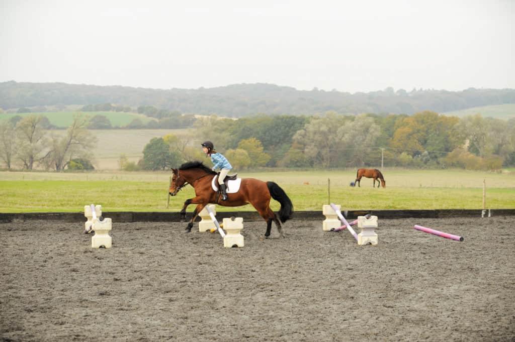 Gridwork ideas for ponies