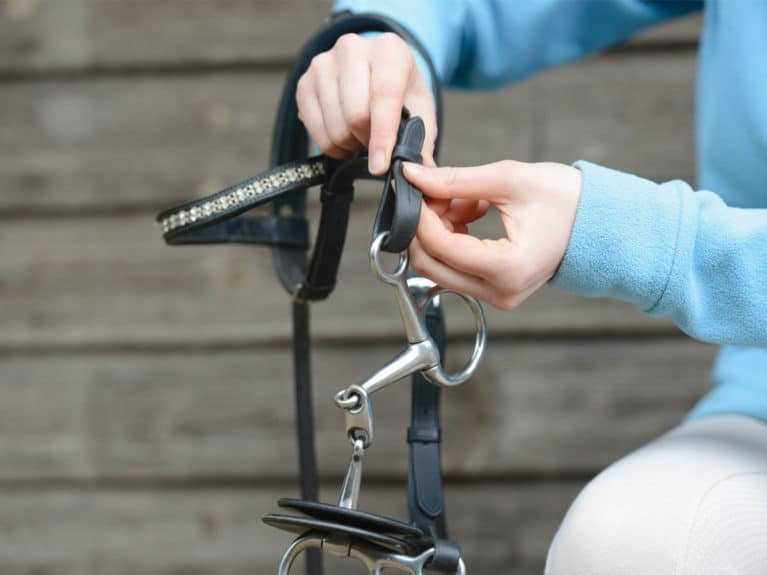Attaching a bit to a bridle