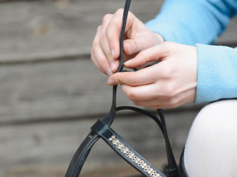 Attaching the cheekpieces to a bridle