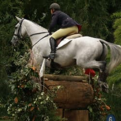 Rider jumping a skinny fence
