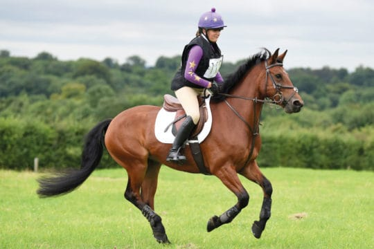 Pony and rider cross-country