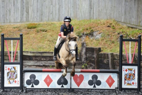 Pony jumping show jumps with filler