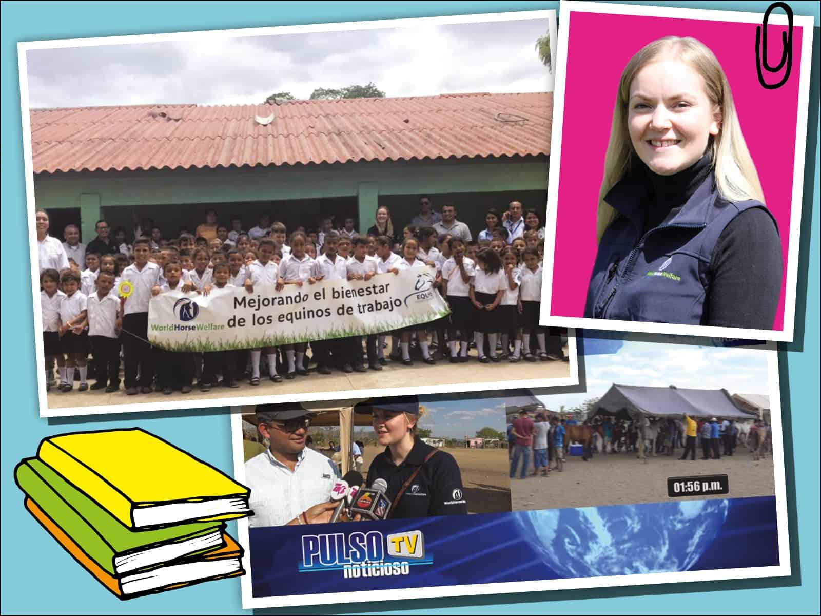 Rebecca, International programme officer at World Horse Welfare