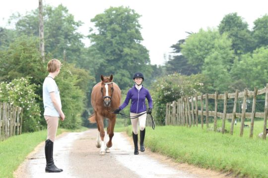 Trotting up your pony to spot lameness