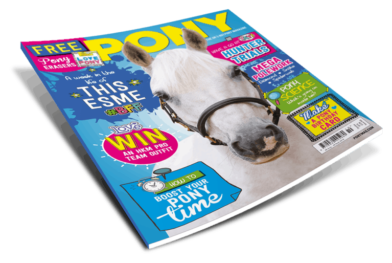October PONY Magazine