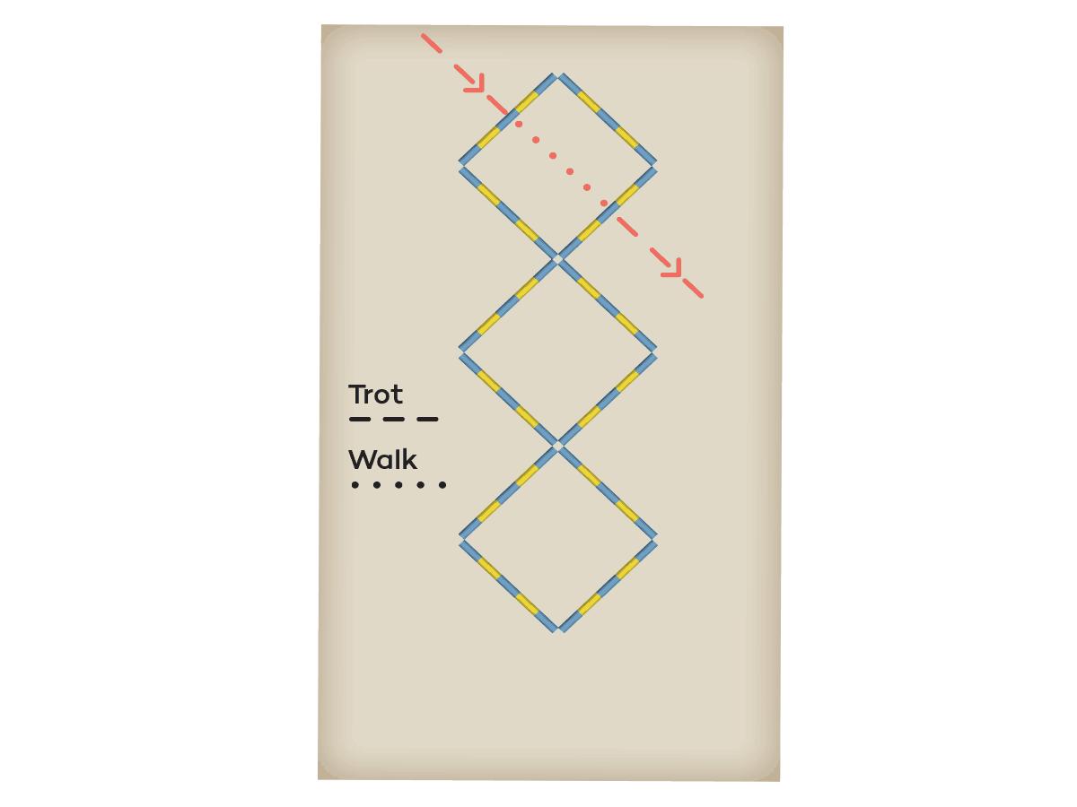 Pole exercise diagram