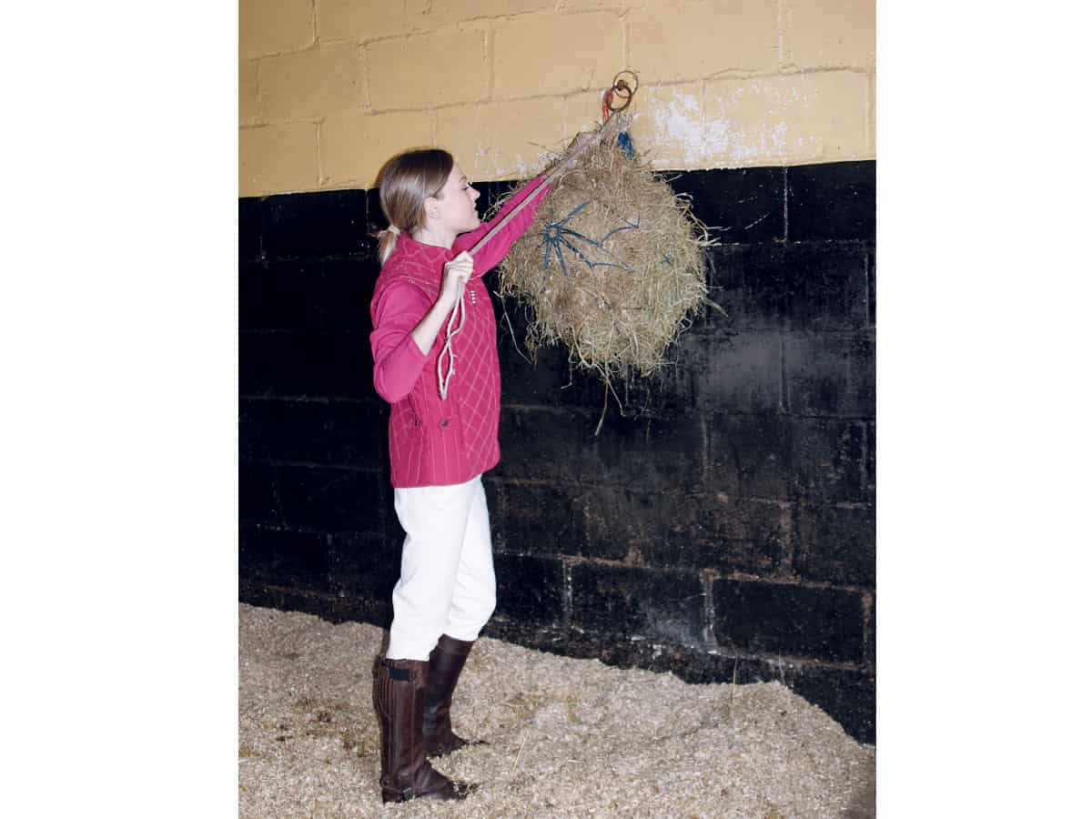Hanging up a haynet in the stable