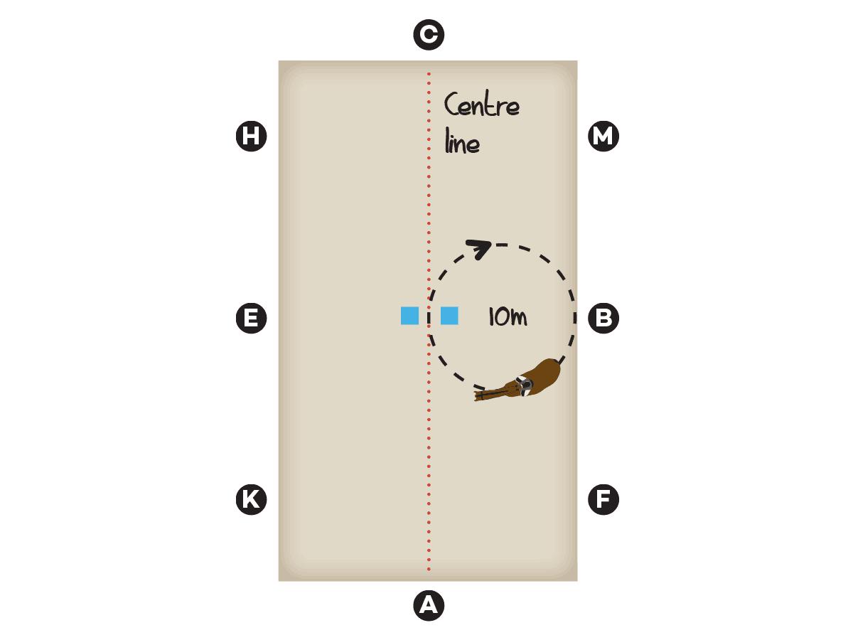 Diagram for riding a 10m circle