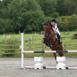 Jumping a pony