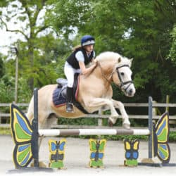 Pony jumping fillers