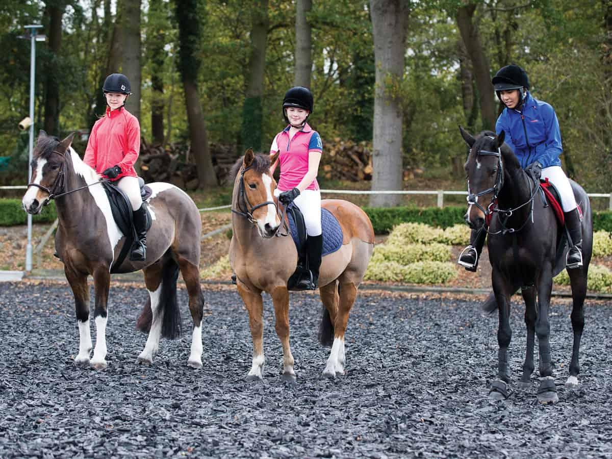 Asking questions in a riding lesson