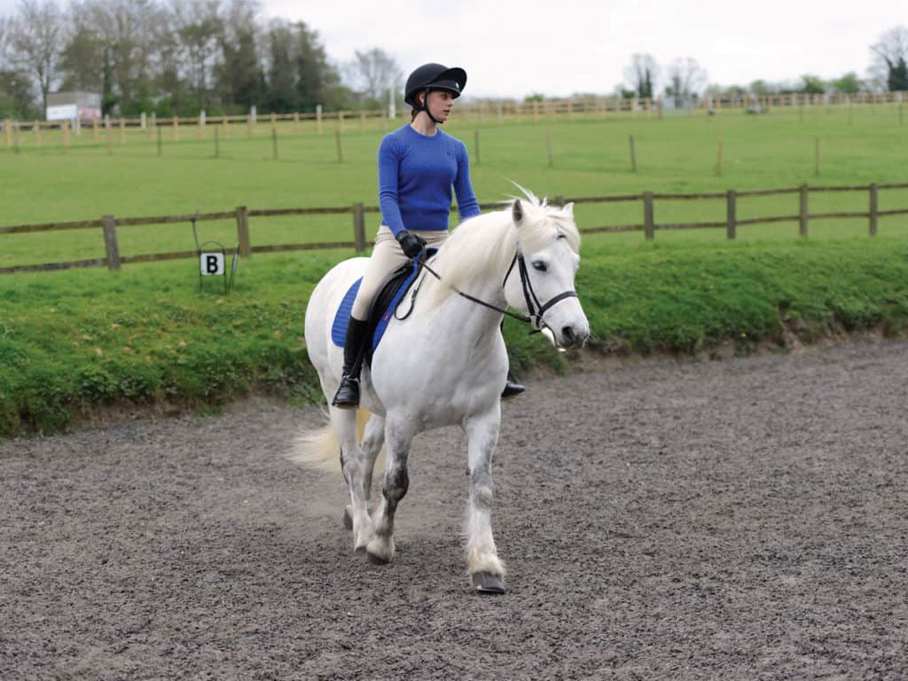 Riding a dressage test