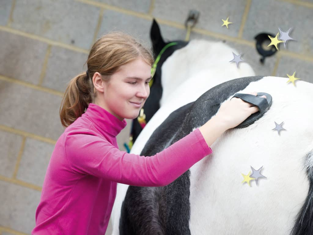 Making your pony sparkle through grooming