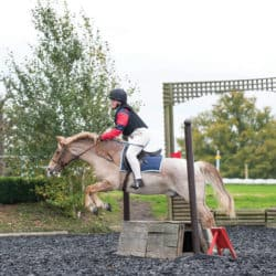 Rena eventing, rider and horse jumping a cross country style fence
