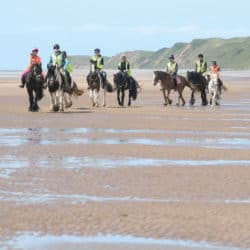 Group of people riding on the beach