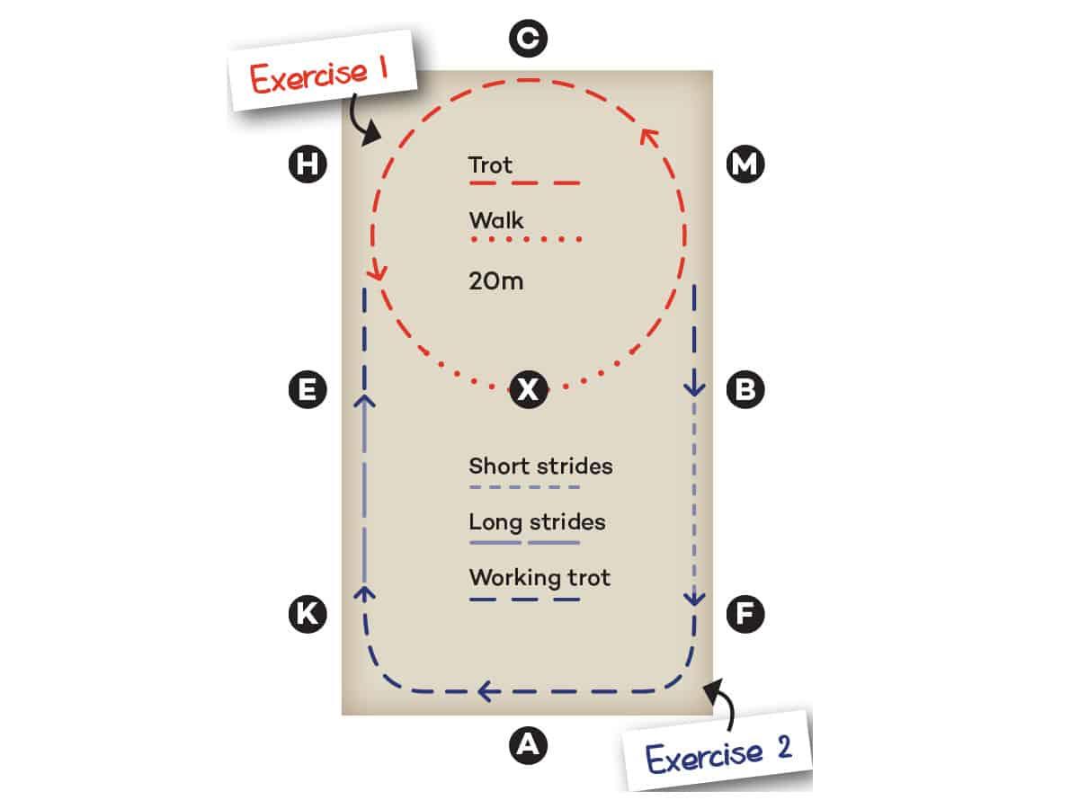 30 minute schooling exercises diagram