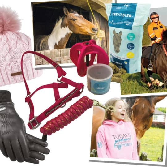 Prizes available in February PONY giveaway