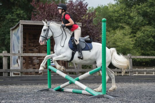 Jumping a showjump straight