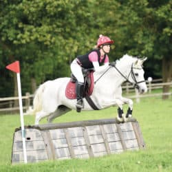 roll-top cross-country fence type