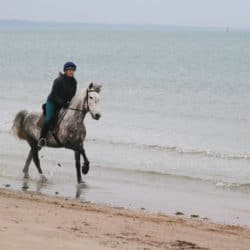 Cantering a pony along a beach