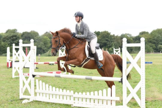 show jumping a course