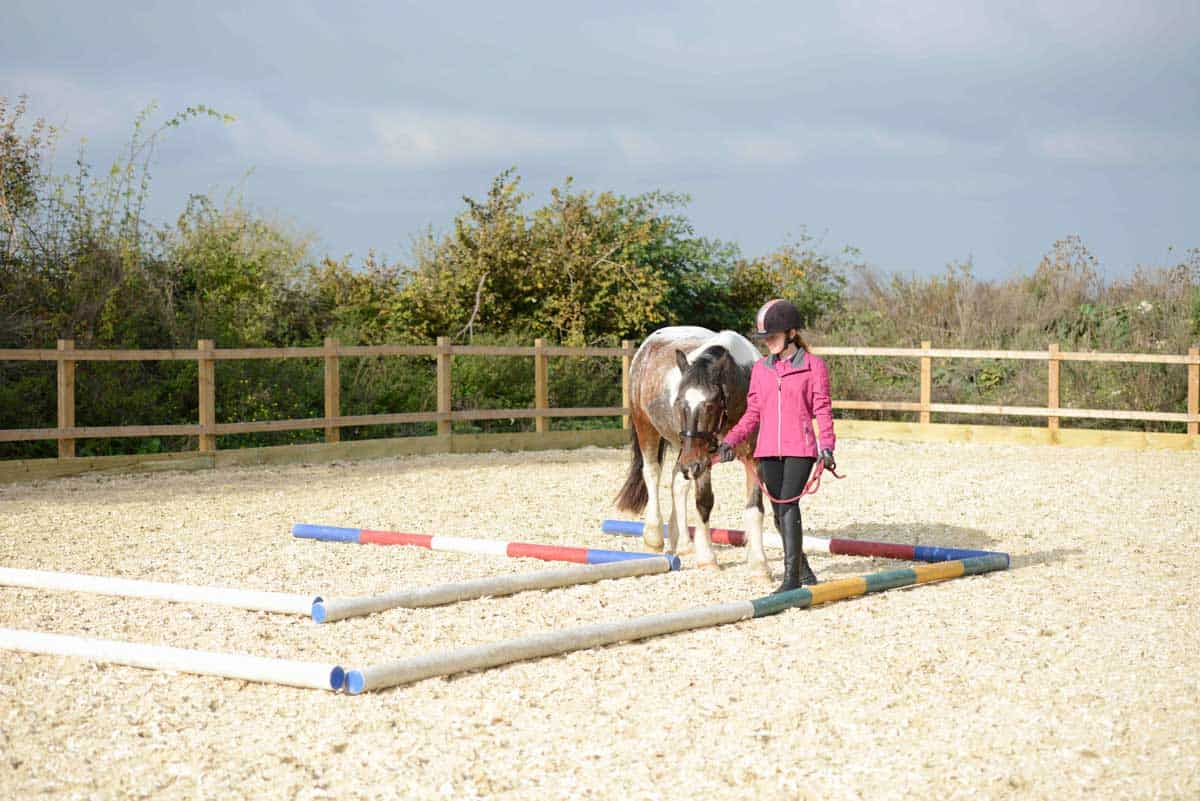 Groundwork exercises with your pony