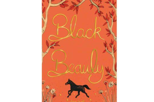 Black Beauty, PONY mag book club read