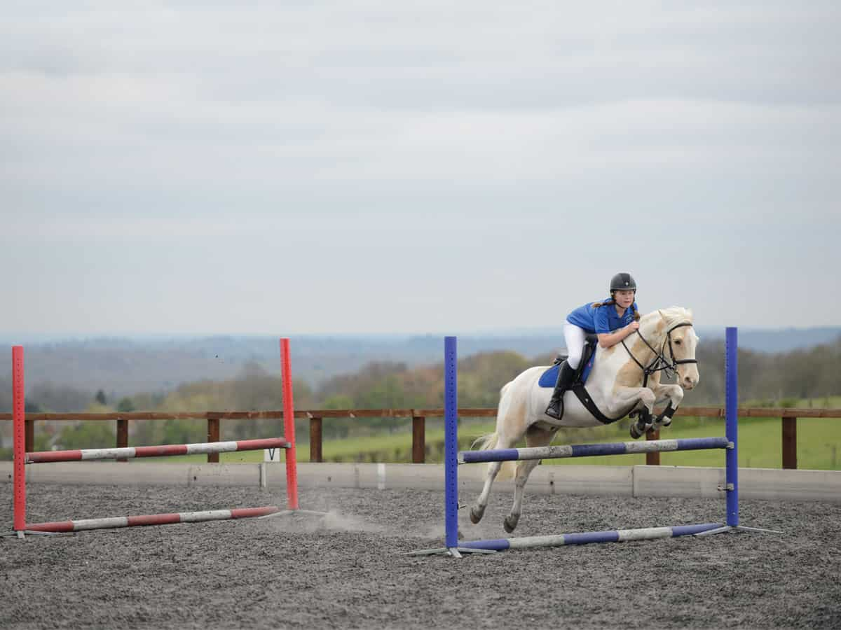 How To Jump A Double Show Jumping Exercise Pony Magazine