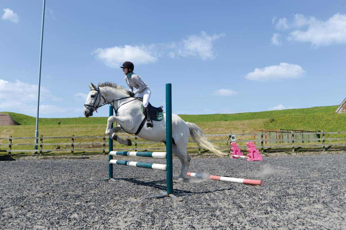 jumping with a placing pole
