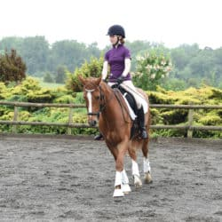 Flatwork exercises for you and your pony