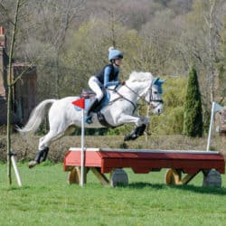 Pony jumping a cross-country fence