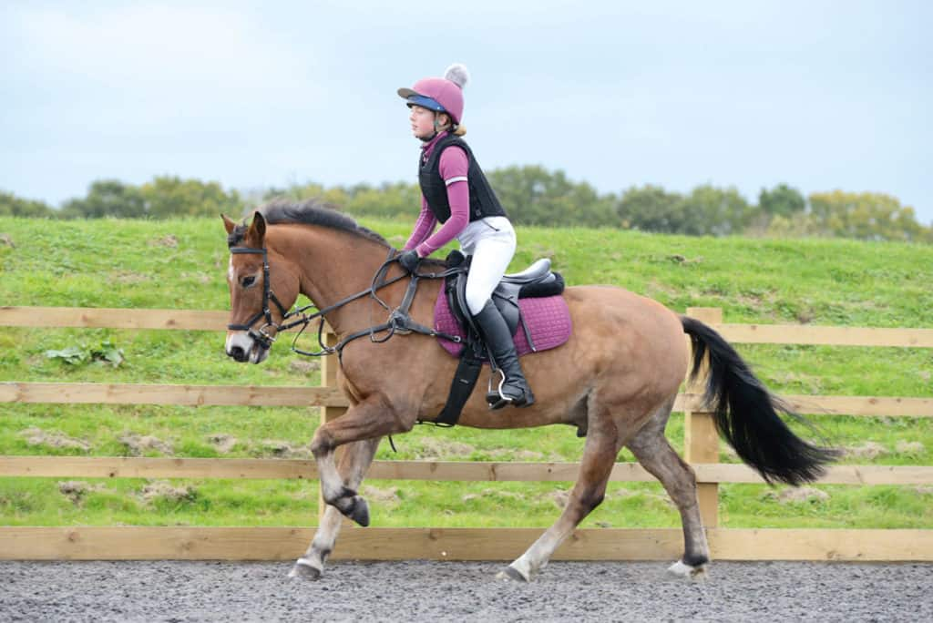 Clipped pony being ridden