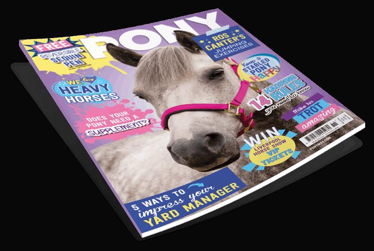 November PONY magazine