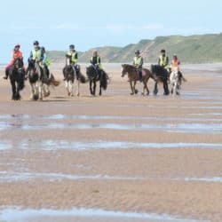 Ponies being ridden on the beach