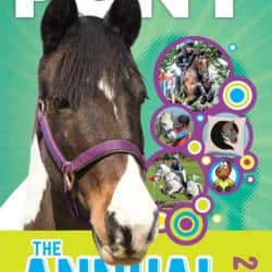 PONY the Annual 2020