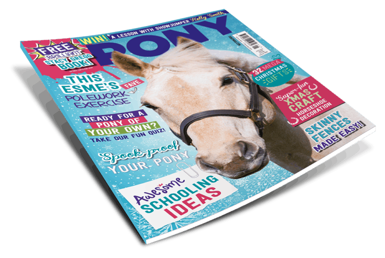 PONY January Magazine