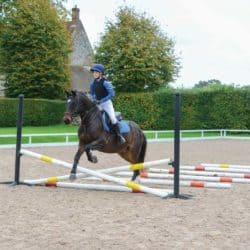 Gridwork riding exercise