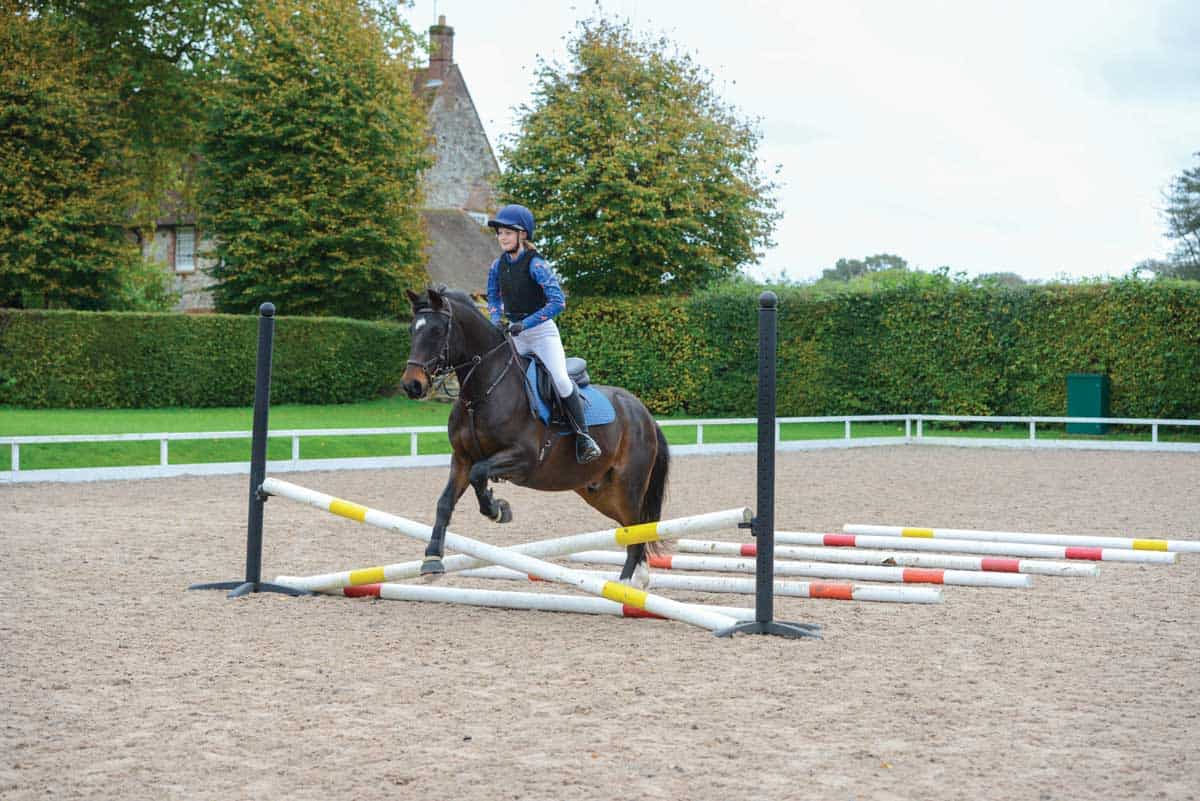 20 Jumping Rules Everyone Should Know Pony Magazine