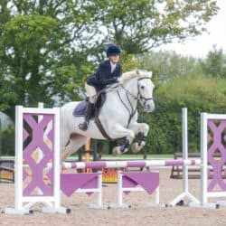 Horse rider competing, showjumping