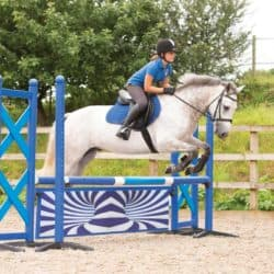 rider and pony showjumping