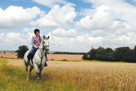 Girl riding a mare