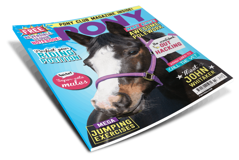 PONY Magazine March 2020