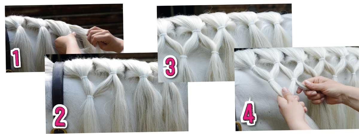 How to do lattice plait in horse's mane