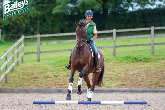 Mary King riding a flatwork pole exercise