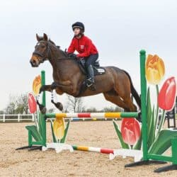 Pony nuts jumping in a lesson with Ben Hobday